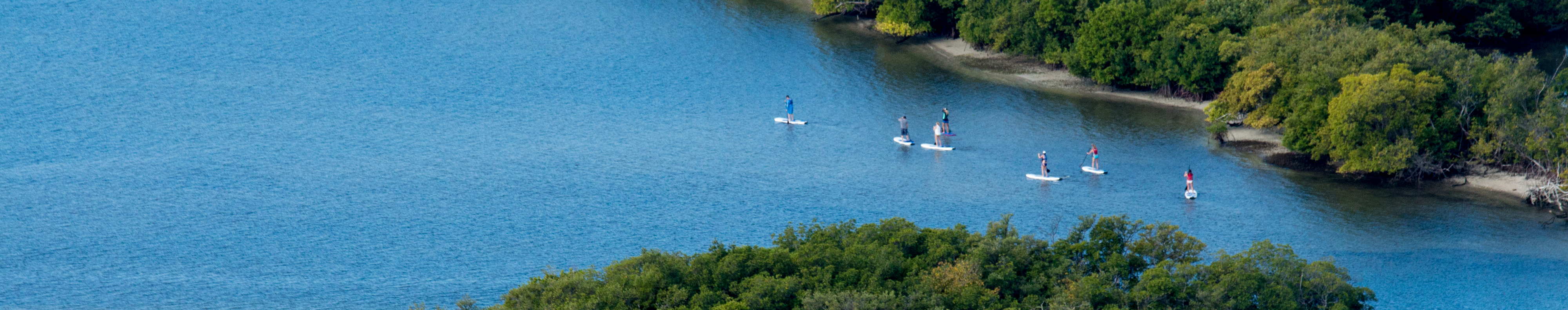 People paddle surfing